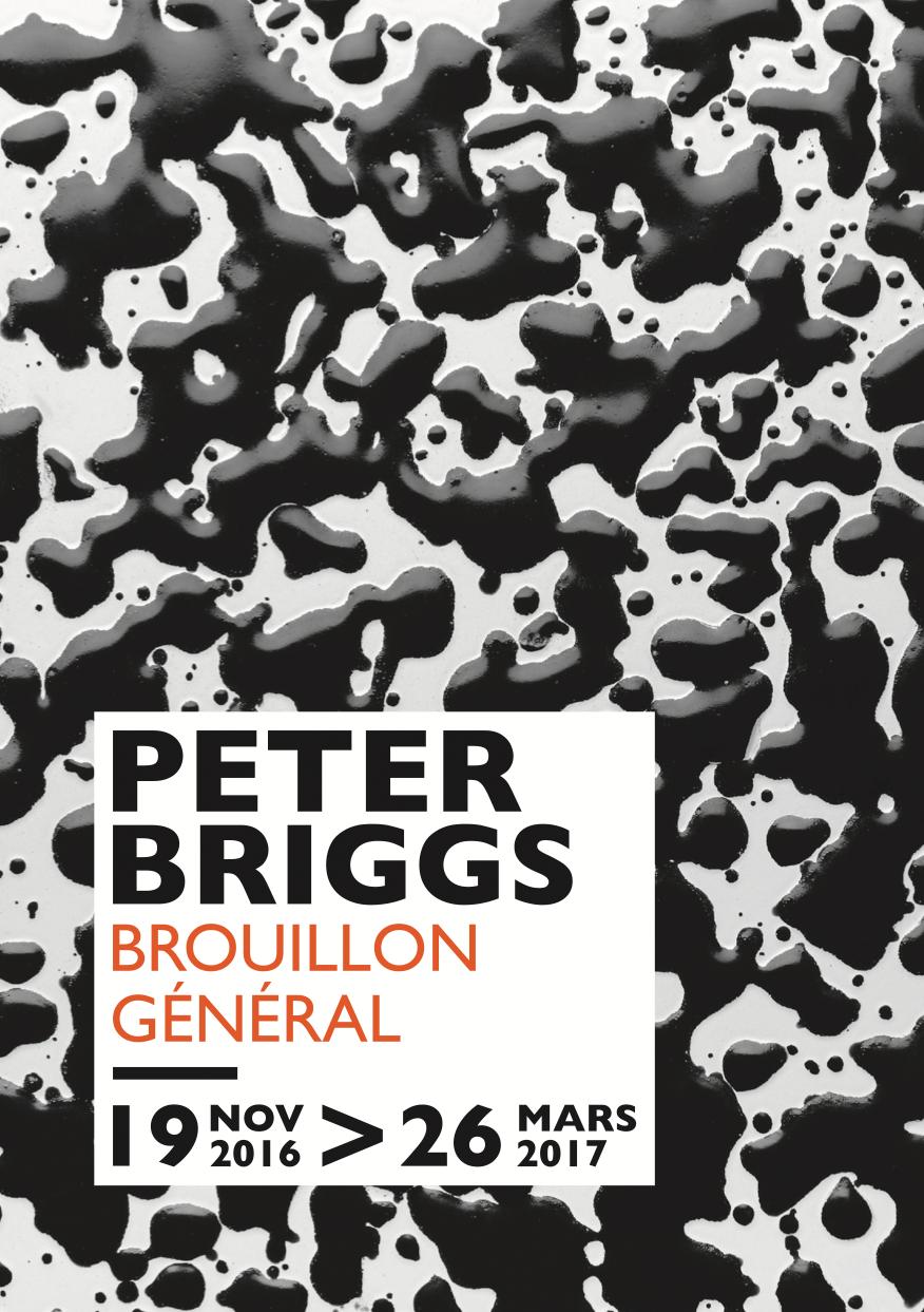 Affiche exposition Peter Briggs, Musée des Beaux-Arts d'Angers